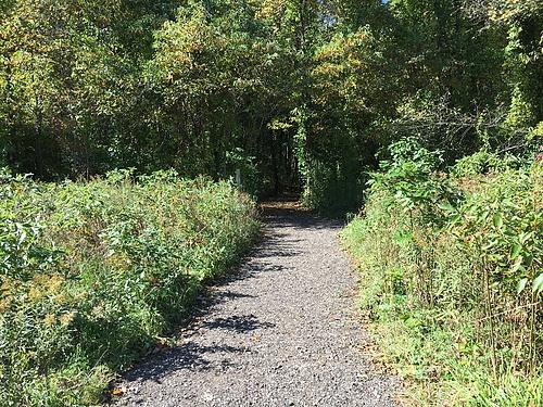 Recycled asphalt path in the Arboretum