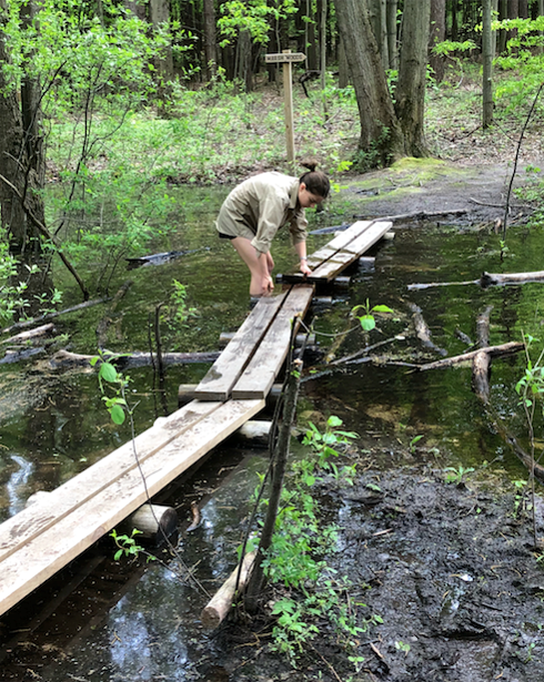 A Kalamazoo College student standing in a flooded trail trying to fix a wooden footbridge