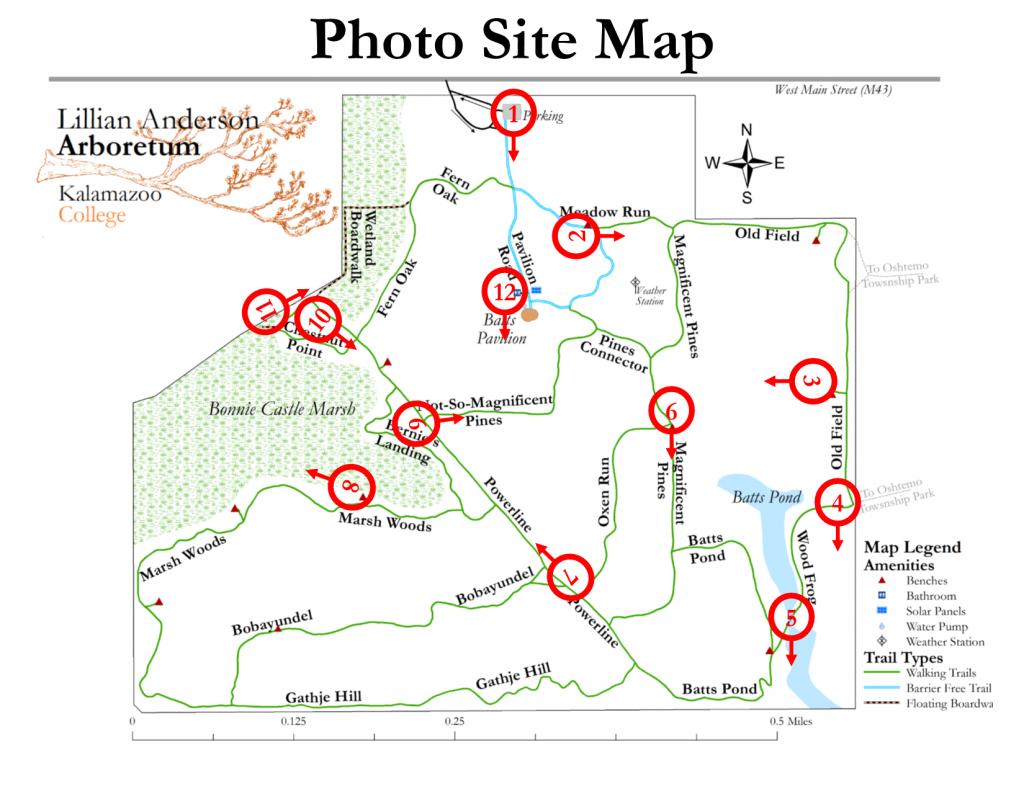 Arboretum Photo Site Map